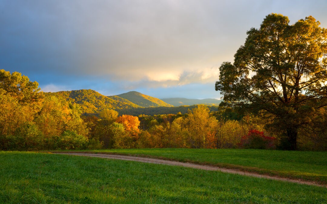 Asheville Fall Color Tours You Can't Miss